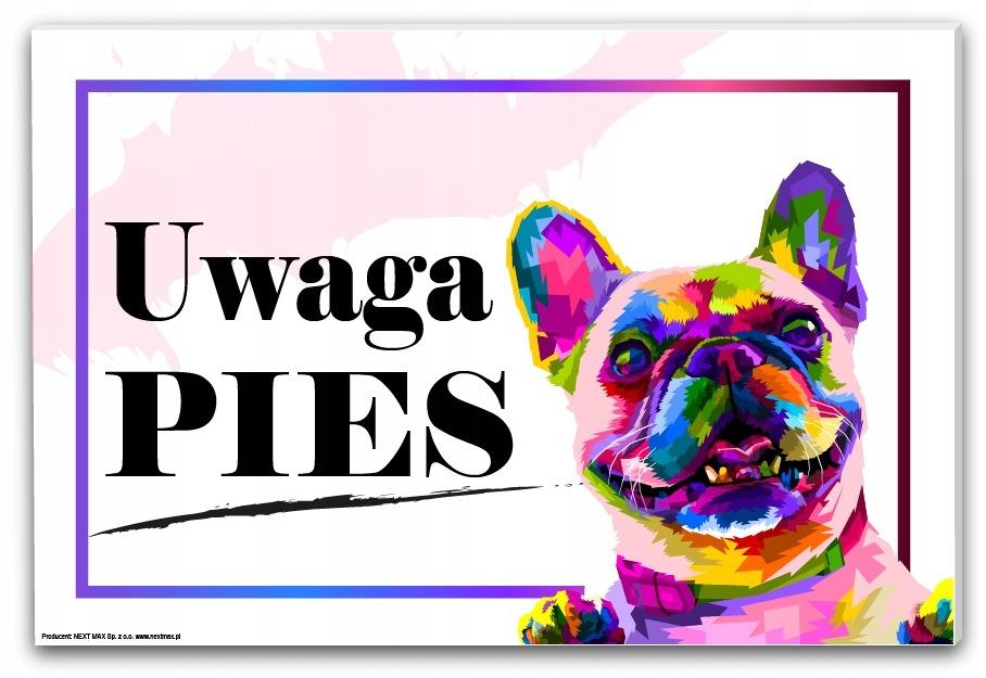 tabliczka uwaga pies buldog