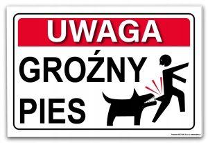 tabliczka uwaga pies