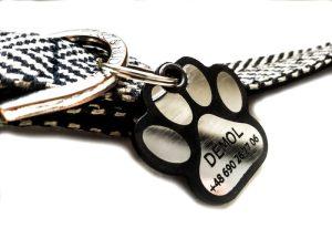 adresatka dla psa